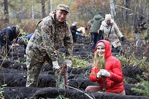12 тысяч молодых деревьев высадили в Тогучинском районе НСО